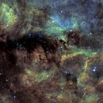 nébuleuse obscure dans le Cygne