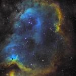 IC 1848 zoom sur le foetus